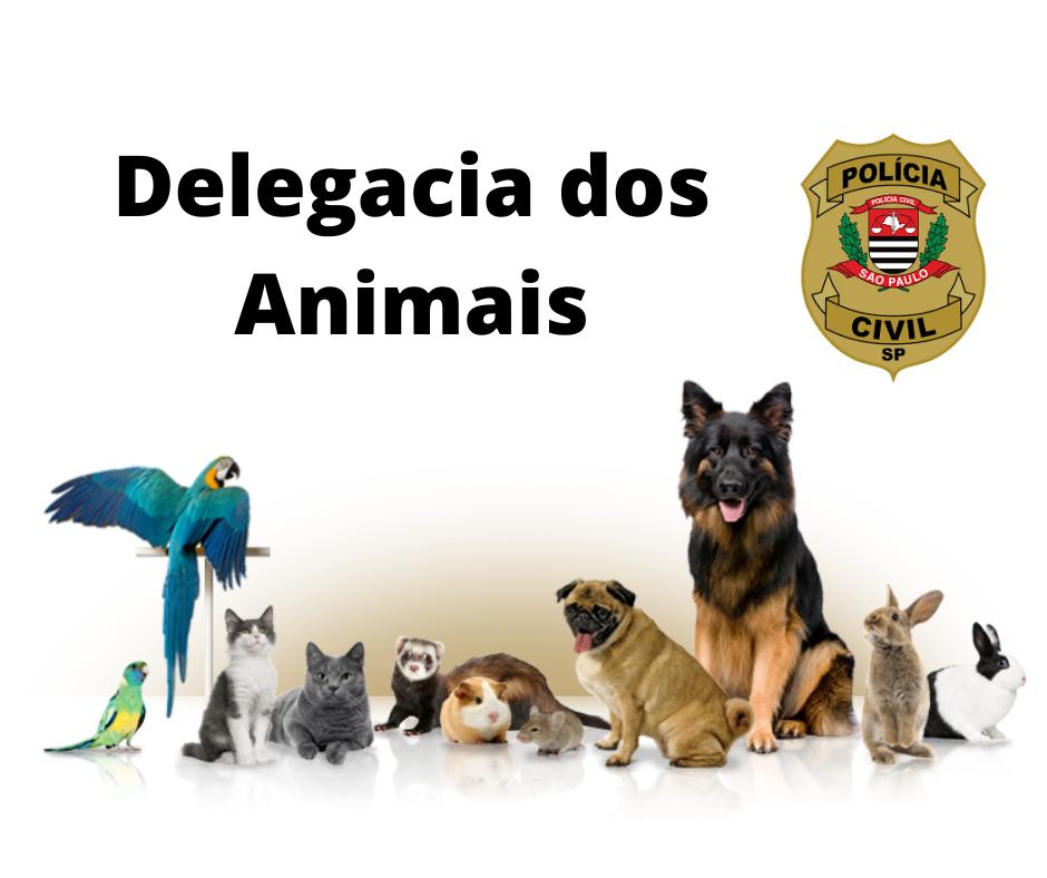 Conquista: Campinas volta a ter uma Delegacia dos Animais